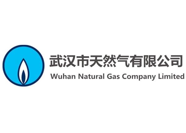 武汉市天然气有限公司
